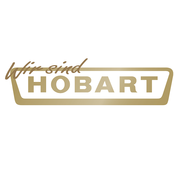 vision integrated graphics hobart in